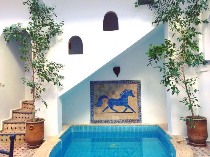 Marokko Reisen Michael Gentschy